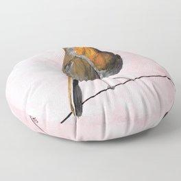 Robin Redbreast, Orange Bird Art Floor Pillow