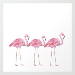 Flamingo - Pink Bird - Animal On White Background Kunstdrucke