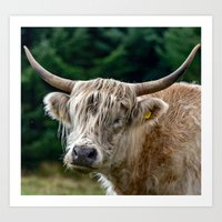 Don't have a cow Art Print