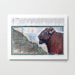 BUFFALO, NEW YORK Metal Print