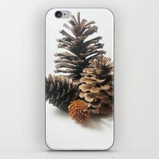 Pinecones iPhone & iPod Skin