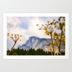 Yosemite National Park - Half Dome Mountain Art Print