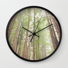Giant Redwoods Wall Clock