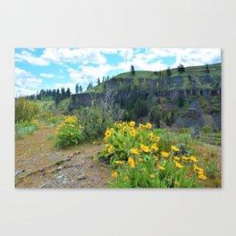 Springtime in the Canyon Canvas Print