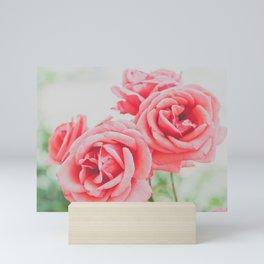 Peachy Roses Photography Mini Art Print