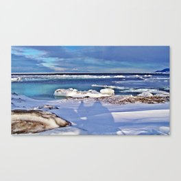 Frozen Selfie by the Sea Canvas Print
