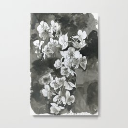 Chiaroscuro Metal Print