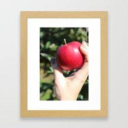 French Quarter Apple  Framed Art Print