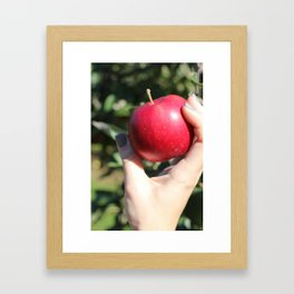 French Quarter Apple  Framed Art Print