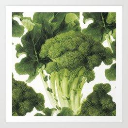 Green brocolli food art Art Print