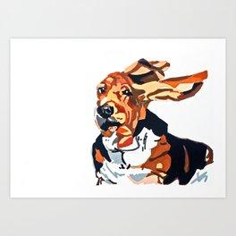 Basset Hound Flying Ears Portrait Art Print
