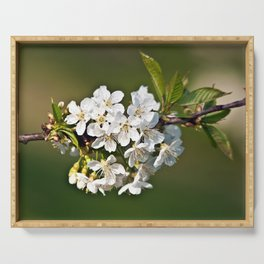 White Apple Blossoms Serving Tray
