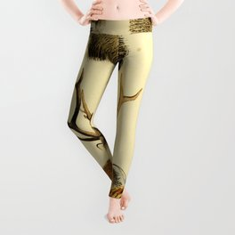 The Great and Small Game of Europe, Western and Northern Asia and America Leggings