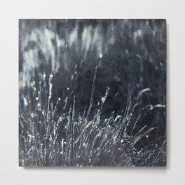 Pearly Dew Drops Metal Print