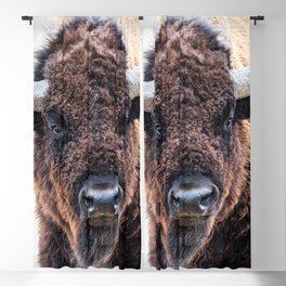 In The Presence Of Bison #society6 #decor #bison by Lena Owens @OLena Art Blackout Curtain