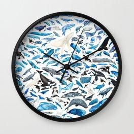 A Celebration of Cetaceans Wall Clock