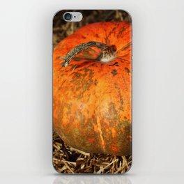 Pumpkin Says Pick Me iPhone Skin