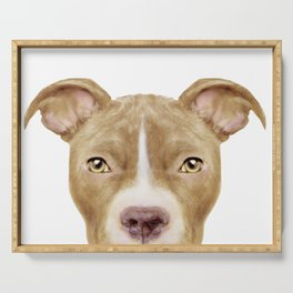 Pit Bull light Brown 2,Dog illustration original painting print Serving Tray
