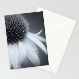 Black and White Coneflower Stationery Cards