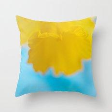 Yellow & Blue Throw Pillow