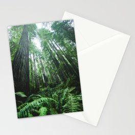 Redwood National Park- Pacific Northwest Nature Photography Stationery Cards