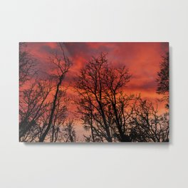 Naked trees silhouette on bloody clouds Metal Print