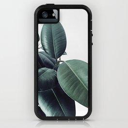 Ficus Elastica #18 #White #foliage #decor #art #society6 iPhone Case