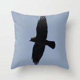Jackdaw In Flight Throw Pillow