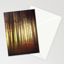 passage into the light Stationery Cards