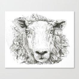 Am I a sheep? Canvas Print