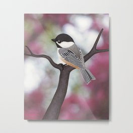 Wiley the black-capped chickadee Metal Print