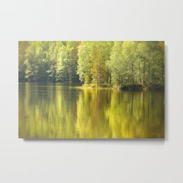 Summer Green Reflection Metal Print
