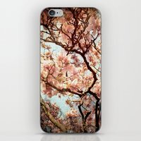 renaissance iPhone & iPod Skins featuring Renaissance by Jenndalyn