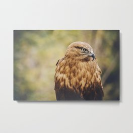 What Can I Do Metal Print