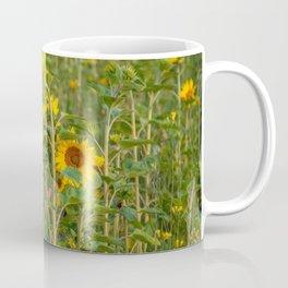 Field of Sun Coffee Mug