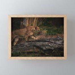 Sneak Attack Framed Mini Art Print