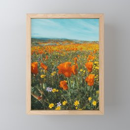 California Wildflower Poppy Superbloom Framed Mini Art Print