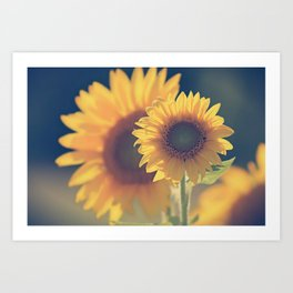 Sunflower 02 Art Print