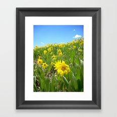 Hello Sunny Framed Art Print
