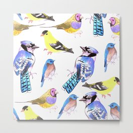 Bird lover- Birds in tetrad color scheme Metal Print