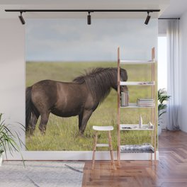 Watercolor Horse 12, Icelandic Pony, Höfn, Iceland, Chocolatastic Wall Mural