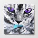 Purple eyes Cat by augustinet