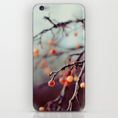 Marzipan iPhone & iPod Skin