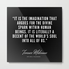 21   |  Terence Mckenna Quote 190516 Metal Print