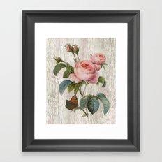 Roses Nostalgie Framed Art Print