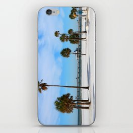 A Florida Winterday iPhone Skin
