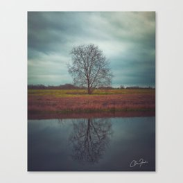 Trees and Reflections  Canvas Print