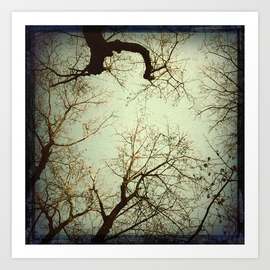 The Light from Above... Art Print