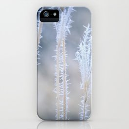 Cold Hoarfrost on the weeds in the winter iPhone Case