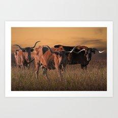 Texas Longhorn Steers on the Prairie at Sunset Art Print